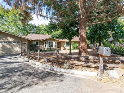 El Dorado County Single Family Home For Sale: 3344 Caballero Court