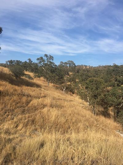 La Grange Residential Lots & Land For Sale: Navarro