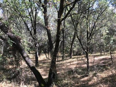 Diamond Springs Residential Lots & Land For Sale: 6 Canyon Valley Road