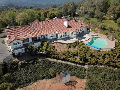 Sonora Single Family Home For Sale: 16411 Crestridge