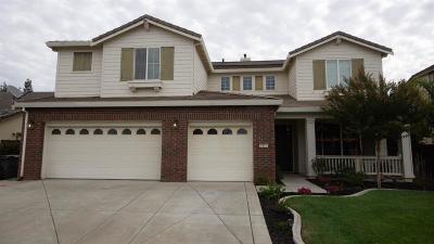 Sacramento Single Family Home For Sale: 8251 Medeiros Way