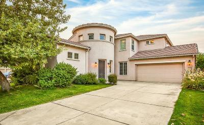 Elk Grove Single Family Home For Sale: 6804 Salvaterra Circle