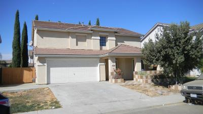 Patterson Single Family Home For Sale: 127 Plover Court