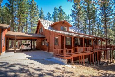Plumas County Single Family Home For Sale: 4995 Grizzly Road