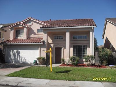Single Family Home For Sale: 9083 Warm Springs Circle