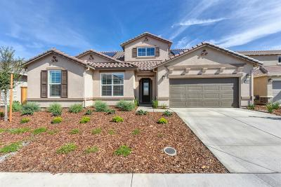 Roseville Single Family Home For Sale: 7876 Mt. Evans Circle