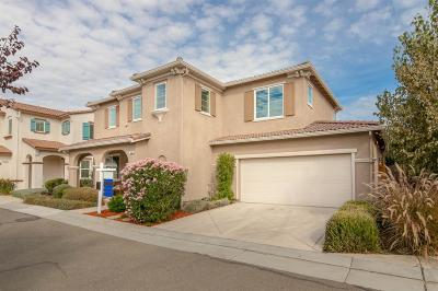 Mountain House Single Family Home For Sale: 289 West Santa Clara Drive