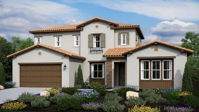 Lincoln Single Family Home For Sale: 3502 Paseo Mira Vista