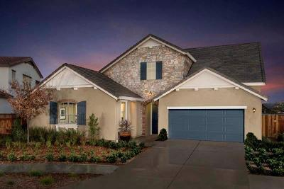 Lathrop Single Family Home For Sale: 18311 Tioga Drive
