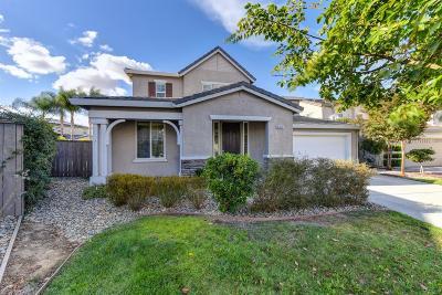 Elk Grove Single Family Home For Sale: 6941 Rio Tejo Way