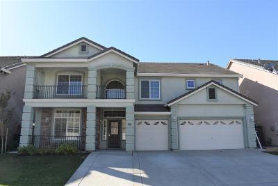 Sacramento Single Family Home For Sale: 3006 Palmate Way