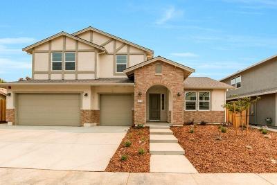 Elk Grove Single Family Home For Sale: 9754 Falcon Meadows Drive