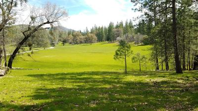 Mountain Ranch Commercial Lots & Land For Sale: 8954 Swiss Ranch Road
