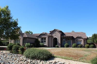 Elk Grove Single Family Home For Sale: 9971 Kapalua Lane