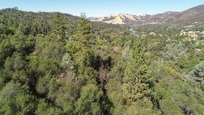 El Dorado County Residential Lots & Land For Sale: 5725 Lakotah Lane