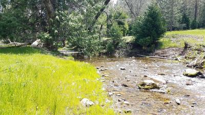Mountain Ranch Commercial Lots & Land For Sale: Swiss Ranch Road
