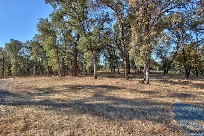 Auburn Residential Lots & Land For Sale: 23350 Darkhorse Drive