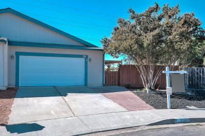 Livermore Single Family Home For Sale: 5380 Treeflower Drive