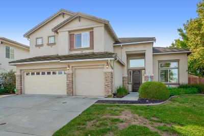 Elk Grove Single Family Home For Sale: 9458 Rossport Way