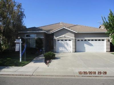 Modesto Single Family Home For Sale: 4025 Shady Glen Court