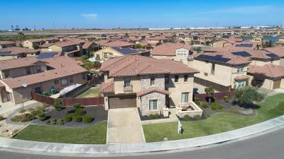 Manteca Single Family Home For Sale: 4187 Volpaia Place