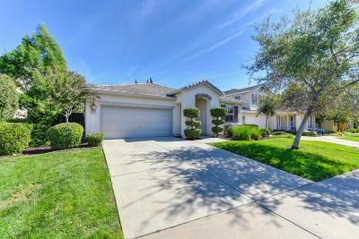 El Dorado Hills Single Family Home For Sale: 4141 Monte Verde Drive