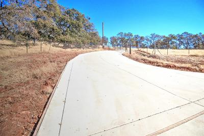 Lincoln Residential Lots & Land For Sale: 9060 Valley Road