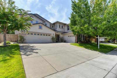 Rocklin Single Family Home For Sale: 2103 Big Sky Drive