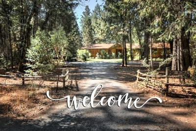 El Dorado County Single Family Home For Sale: 3157 Conifer Lane