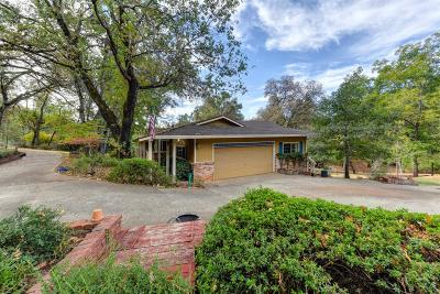 Meadow Vista Single Family Home For Sale: 419 Greenwood Drive