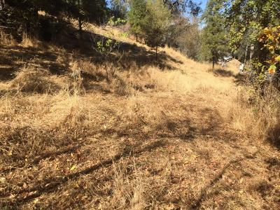 Sutter Creek Residential Lots & Land For Sale: 205 Bryson