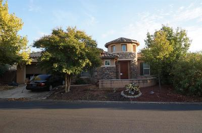 Roseville Single Family Home For Sale: 9195 Pinehurst Drive