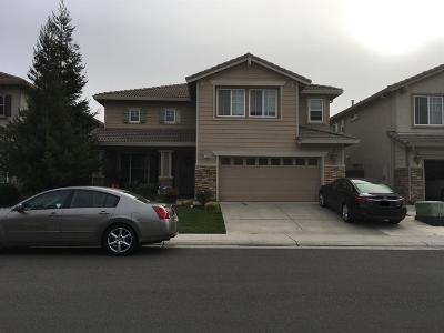 Elk Grove Single Family Home For Sale: 10235 Canadeo Circle