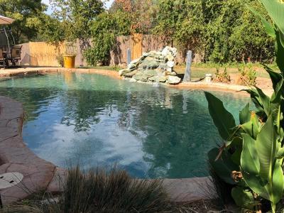 Valley Springs Single Family Home For Sale: 153 Mistletoe