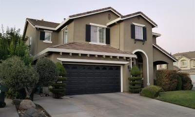 Modesto Single Family Home For Sale: 3813 Green Jade Court