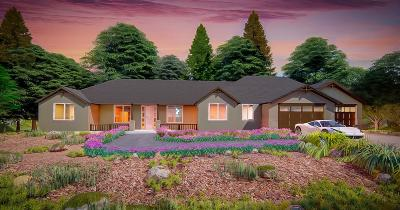 Placer County Single Family Home For Sale: 3340 Nancy
