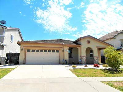 Elk Grove Single Family Home For Sale: 7840 Gimron Way