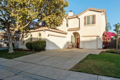 Elk Grove Single Family Home For Sale: 9563 Jaguar Court