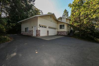 Pine Grove Single Family Home For Sale: 19755 Pitts Drive