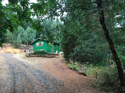 El Dorado County Single Family Home For Sale: 6200 Canyon Creek Road