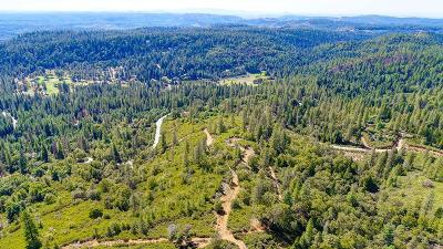 Amador County Residential Lots & Land For Sale: Silver Pointe