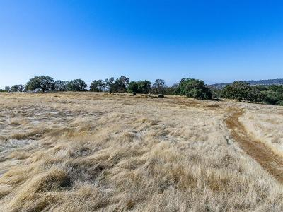El Dorado Hills Residential Lots & Land For Sale: 4400 Silver Dove Way
