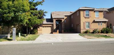 Elk Grove Single Family Home For Sale: 8423 Jordan Ranch Drive