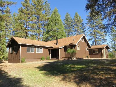 Mokelumne Hill CA Single Family Home For Sale: $610,000