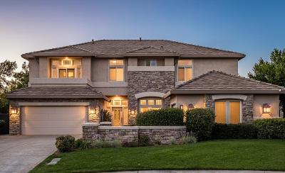 El Dorado Hills Single Family Home For Sale: 131 Gage Court