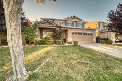 Tracy Single Family Home For Sale: 1041 Saffron Drive