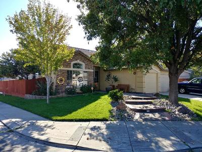 Stockton Single Family Home For Sale: 1788 Erickson Circle