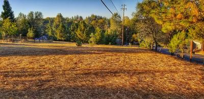 El Dorado County Single Family Home For Sale: 1960 Lake City Court