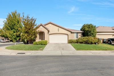 Elk Grove Single Family Home For Sale: 5317 Silhouette Court