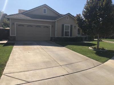 Newman Single Family Home For Sale: 654 Crevison Peak Drive